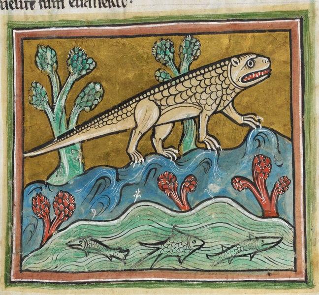 Crocodile - Rochester Bestiary, BL Royal 12 F xiii, f. 24r.