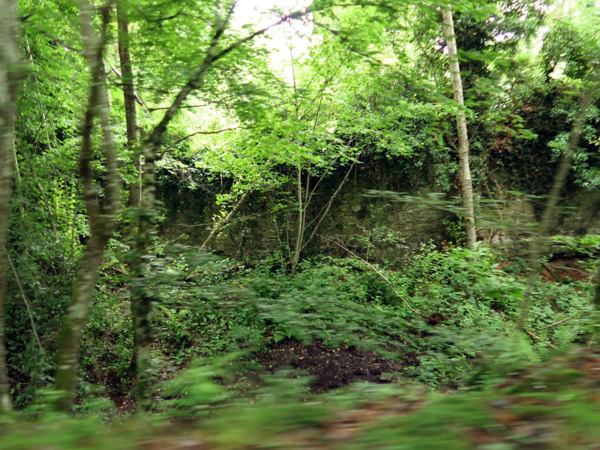 Les restes de murailles autour du site des Moulineaux